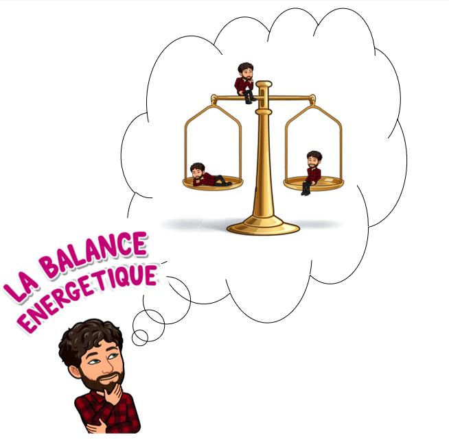 Balance énergétique